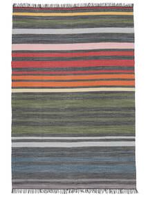 Rainbow Stripe - Grey Rug 160X230 Authentic  Modern Handwoven Light Grey/Dark Grey (Cotton, India)