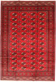 Turkaman Rug 201X293 Authentic  Oriental Handknotted Rust Red/Dark Red/Crimson Red (Wool, Persia/Iran)
