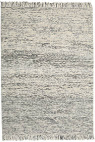 Dolly Multi - Mixed Grey Rug 240X340 Authentic  Modern Handwoven (Wool, India)