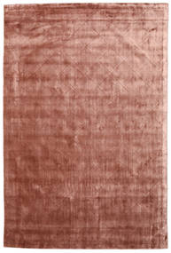 Brooklyn - Pale Copper Rug 300X400 Modern Dark Red/Light Brown Large ( India)