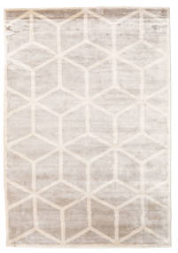 Facets Rug 170X240 Authentic  Modern Handknotted Light Grey/White/Creme ( India)