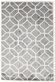 Palace Rug 300X400 Authentic  Modern Handknotted Light Grey/White/Creme Large ( India)