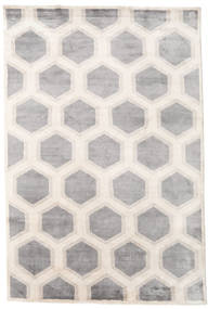 Lounge Rug 170X240 Authentic  Modern Handknotted Light Grey/Beige ( India)
