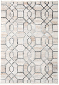 Outdoor Rug Tracy Rug 170X240 Authentic  Modern Handwoven Light Grey/White/Creme ( India)