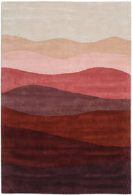 Feeling Handtufted - Wine Rug 250X350 Modern Dark Red/Light Grey Large (Wool, India)