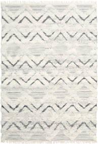 Lydia Rug 200X300 Authentic  Modern Handwoven Dark Beige/Beige (Wool, India)