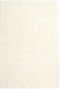 Woodyland - Beige Rug 200X300 Modern Beige/White/Creme (Wool, India)