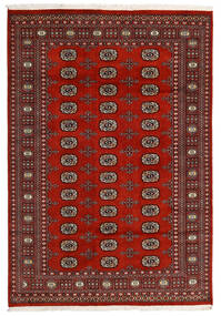 Pakistan Bokhara 2Ply Rug 166X240 Authentic  Oriental Handknotted Black/Dark Red/Dark Brown (Wool, Pakistan)