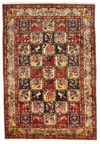 Bakhtiari Collectible Rug 212X311 Authentic Oriental Handknotted Dark Red/Dark Brown (Wool, Persia/Iran)